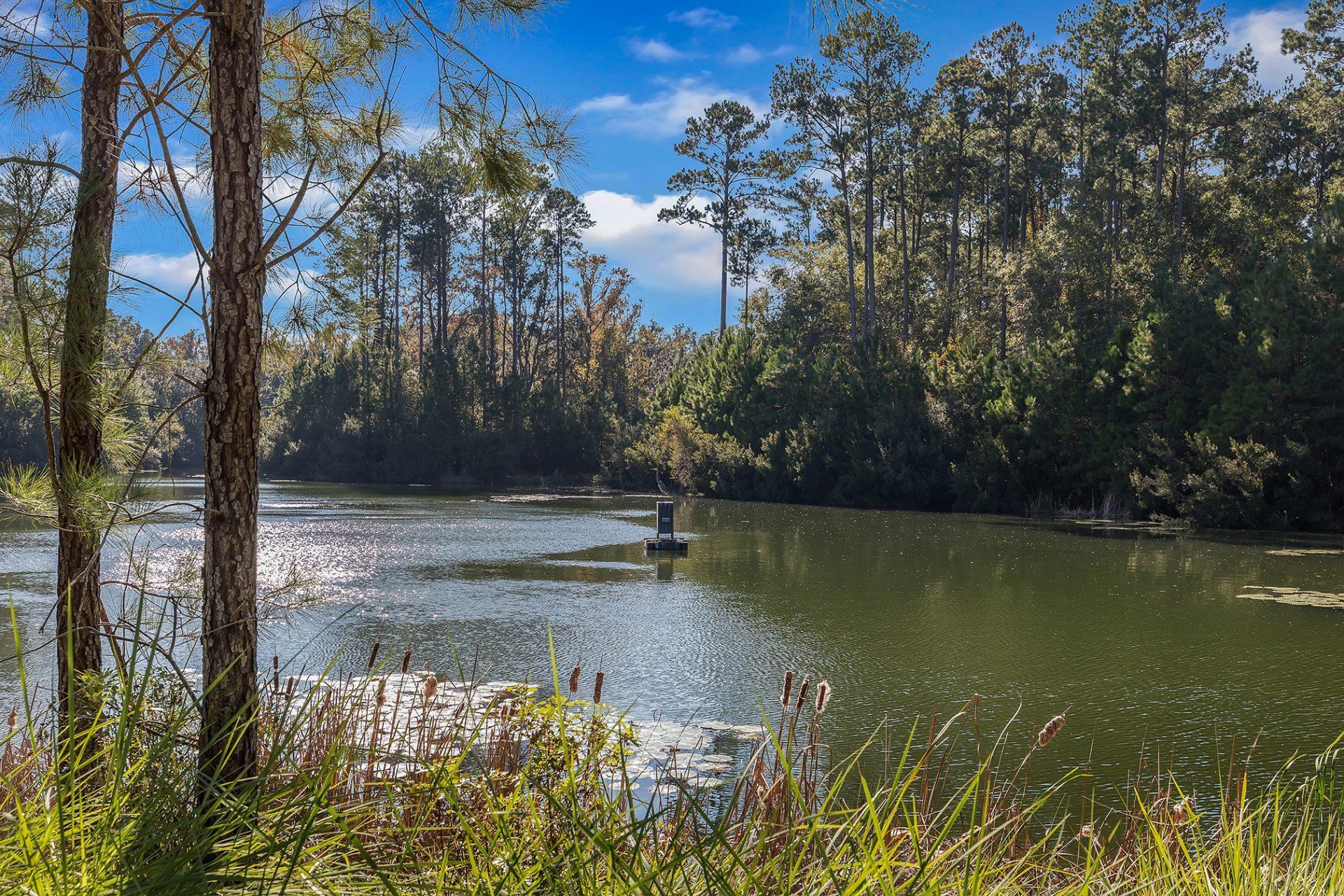 Waterways Community Photo
